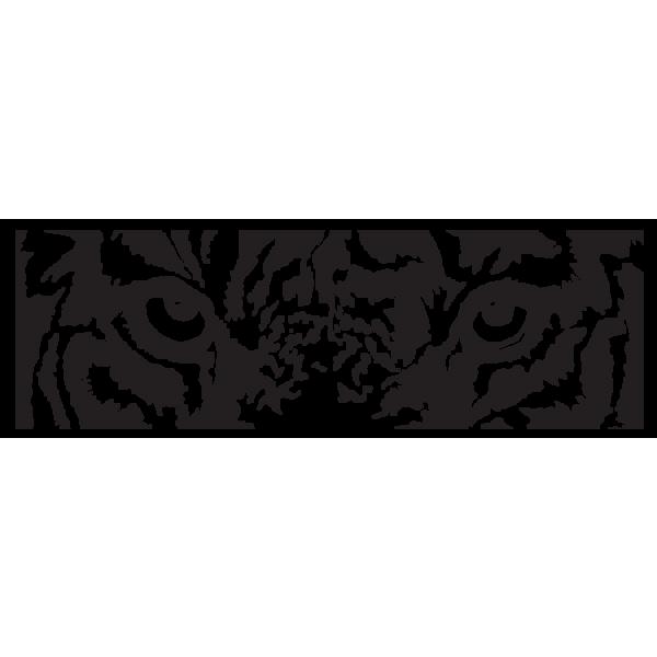 Fotomurales de tigres, El Descanso - A1-LFTNT1594